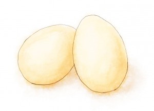 Illustration of two eggs for victoria sponge recipe
