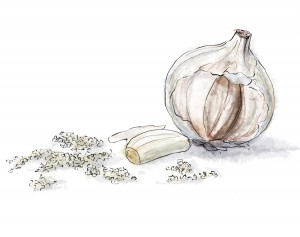 Chopped garlic illustration for easy steak recipe