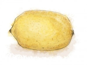 An illustration of a lemon for savoury pear and gorgonzola tart recipe