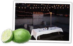 Illustrated lime on the roof terrace