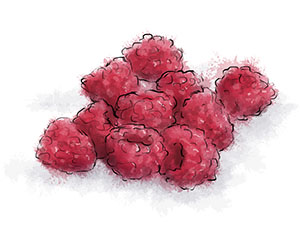 Ilustrated pile of raspberries for ice cream sauce