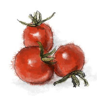 Cherry tomato illustration for Greek salad tart recipe