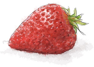 Victoria Sponge Recipe illustration of a strawberry