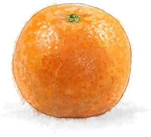 Recipe illustration for chicken with orange