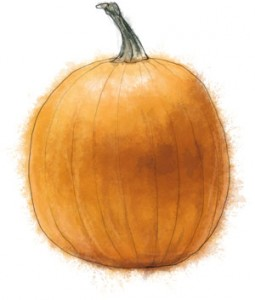 Recipe illustration of a pumpkin for easy pumpkin soup recipe
