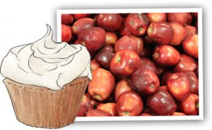 Apple cupcakes illustration for recipe