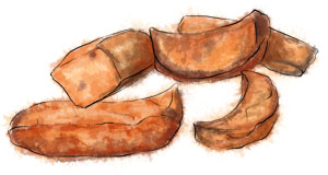 Illustration of pieces of roasted butternut squash for Thanksgiving