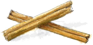 Illustration of cinnamon sticks for carrot cake recipe