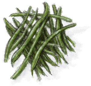Green beens for Thanksgiving recipe