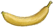 Banana illustration for recipe
