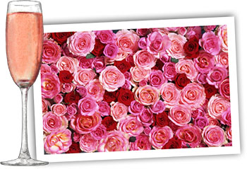 Pink champagne and roses to illustrate recipes
