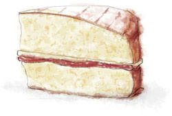 Victoria Sponge Illustration