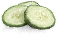 Cucumbers illustration for cucumber collins cocktail recipe
