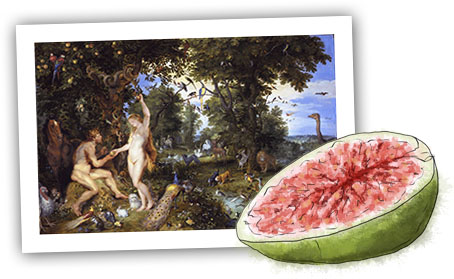 Eden and fig illustration for aphrodisiac pizza recipe