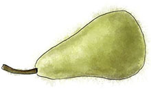 Pear illustration for warm pear and gorgonzola tart recipe