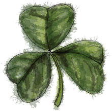 Shamrock Illustration for St Patrick's Day green cupcake recipes