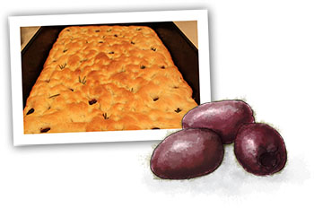 Focaccia and olives illustration for easy focaccia recipe