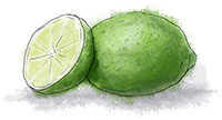 Lime illustration for watermelon sorbet recipe