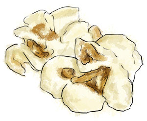 Popcorn illustration for Bieber fest recipes