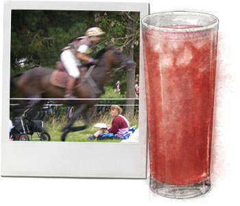 Blenheim horse trials and sloe Gin and tonic