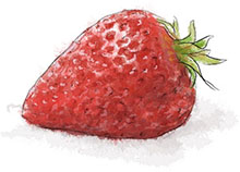 Strawberry illustration for valentines sangria recipe