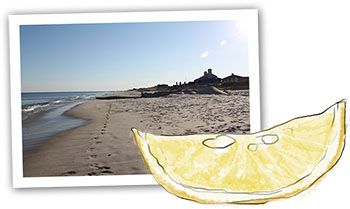 Hamptons Beach Recipe illustration of a lemon and Southampton beach