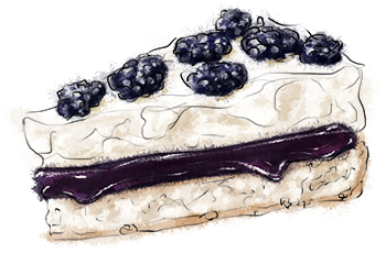 Blueberry pavlova illustration for recipe