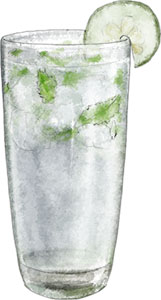 Gin Fizz illustration for labor day cocktail recipes