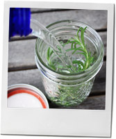Rosemary Vodka recipe