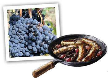 Chianti Grapes And Sausages illustration for recipe