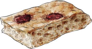 Grape Focaccia illustration for recipe