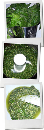 Pesto photos for chiant and antipasto recipes