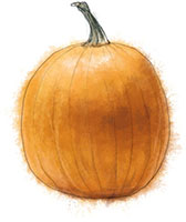pumpkin illustration for halloween cocktail recipes