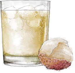 Lychee fizz illustration for sneak like a ninja cocktail recipe