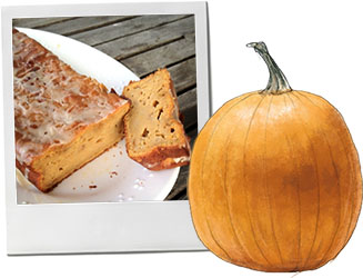 Pumpkin cake photo and pumpkin illustration for recipe