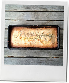 Rosemary Apple Cake Photo for autumn cake recipe