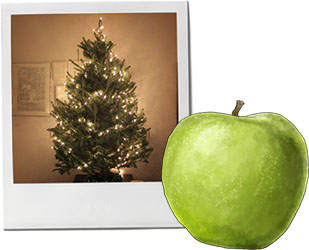 Christmas Tree And Pork With Apple Cider recipe