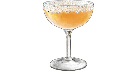 Sidecar cocktail illustration for cocktail recipe
