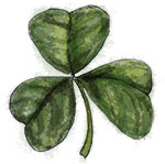 Shamrock illustration for St Patricks Day recipe
