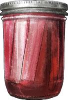 Pickled Rhubarb Illustration for recipe