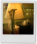 Skewers In Vase
