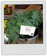 Kale photo for easy peach vinegar recipe
