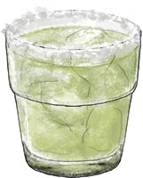 Lime margarita illustration for cocktail recipe