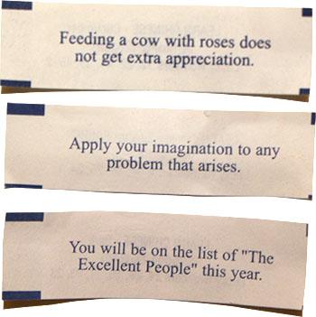 Fortune cookie fortune