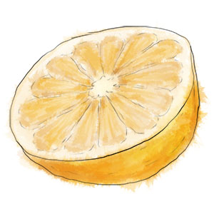 Grapefruit for football fan cocktail illustration