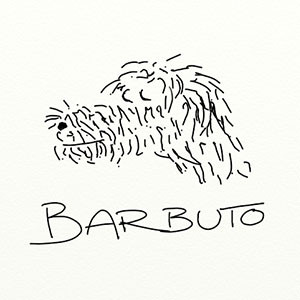 restaurant review of barbuto